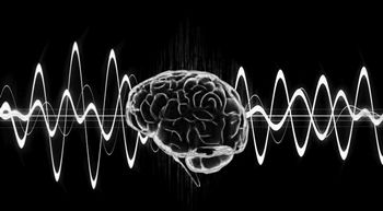 The Power Of The Mind ~ Well it seems more recent research suggests that the true capacity of the brain is much closer to 2.5 petabytes (or a million gigabytes).