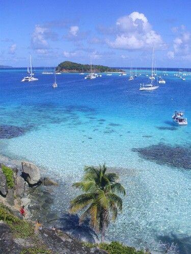 Durante le crociere in catamarano ai Caraibi facciamo sempre una meravigliosa sosta a Toago Cays: tartarughe e pesci tropicali si ammirano durante lo snorkeling. Aragoste alla brace a lume di candela in spiaggia. Vacanze in catamarano ai Caraibi un sogno diventa realtà...