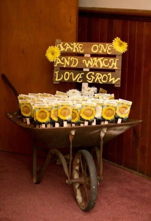 Regalare dei semi è un'ottima idea per donare qualcosa di simbolico, apprezzato da tutti e soprattutto economico. In questa…