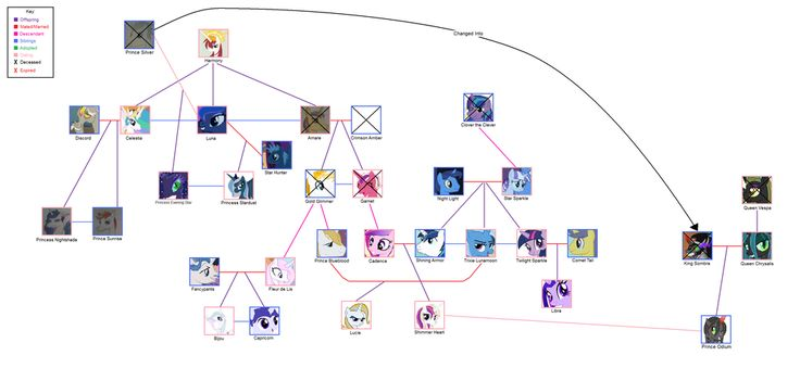 My little pony friendship is magic family tree - photo#2