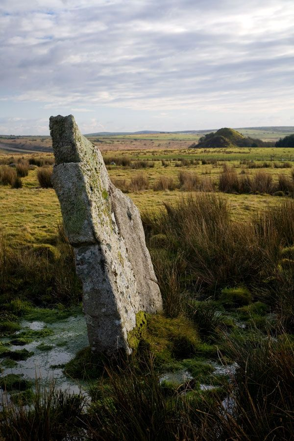Closer look at one of the Stripple Stones on Bodmin Moor.    This is a rather unique arrangement of stones in that it is part of a circle henge, i.e. the stone circle is surrounded by a ditch.    Originally there were in the region of 28 stones standing, now half this many remain on the site and only 3 are standing.