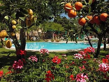 Hotel Antiche Mura Sorrento Italy Swimming Pool And Garden