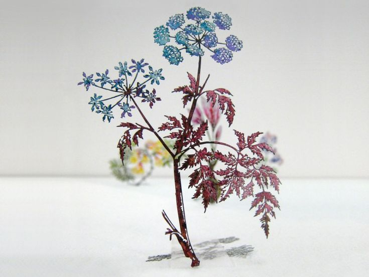 20,000 Steel Flowers Etched From Botanical Drawings Show A Surprisingly Vivid Side | Jeannie Huang