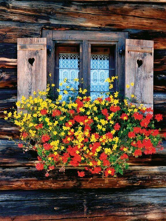 Oltre 25 fantastiche idee su case di montagna su pinterest - Fioriere per davanzale finestra ...