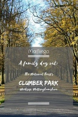 A family day out at Clumber park National Trust Property Text Overlay in front of a picture of the famouse avenue of lime trees taken in Autumn. There are so many things for children and families to do on a trip to Clumber Park such as cycling, visiting t