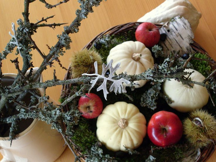 Autumn composition, floristry, pumpkin, apple, pumpkins, nature, moss, birch bark, lichen, Senecio cineraria