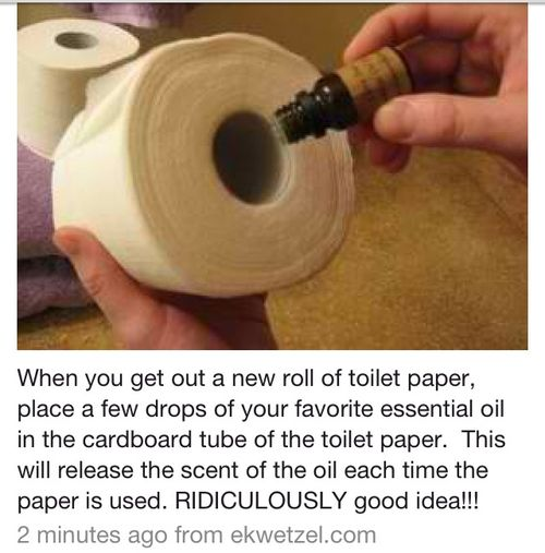 DIY | Tumblr - An easy way to keep your bathroom smelling nice and clean