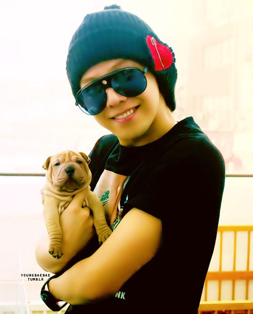GD and Gaho
