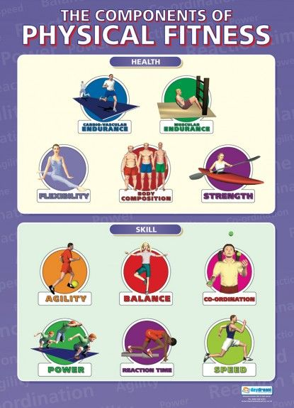 The Components of Physical Fitness Poster