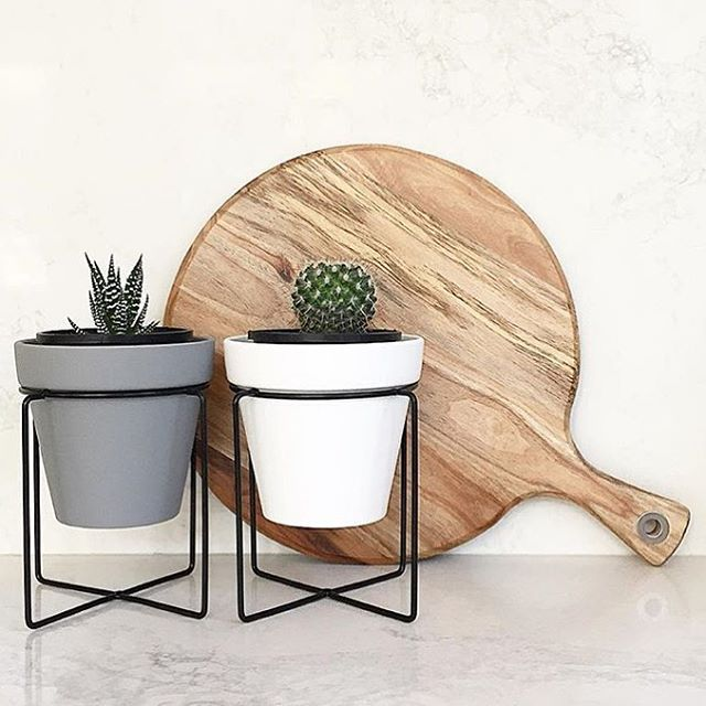 Love what @meldzam has done with her #Kmart pots and mini plant stands …