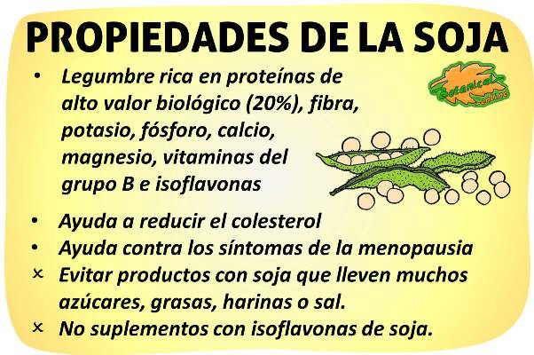 propiedades de la soja y sus beneficios
