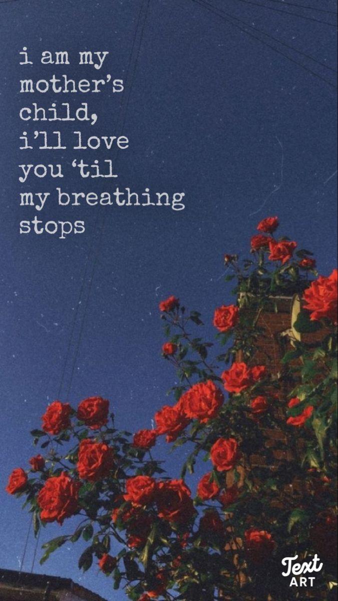 Lorde Lyrics Aesthetic Roses Wallpaper Grunge Lorde Lyrics Lyrics Aesthetic Lorde