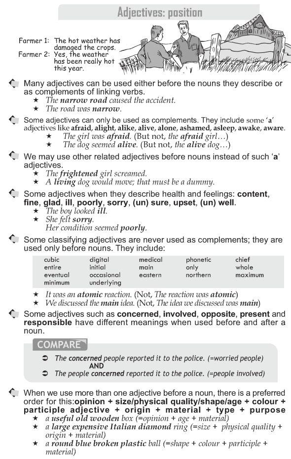 Grade 10 Grammar Lesson 19 Adjectives position (1)