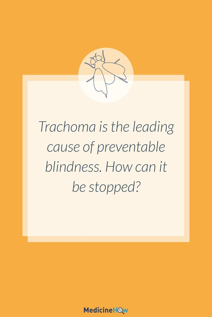 Trachoma is the leading cause of preventable blindness. How can it be stopped?