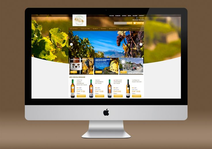 Domain du Mont D'or web design