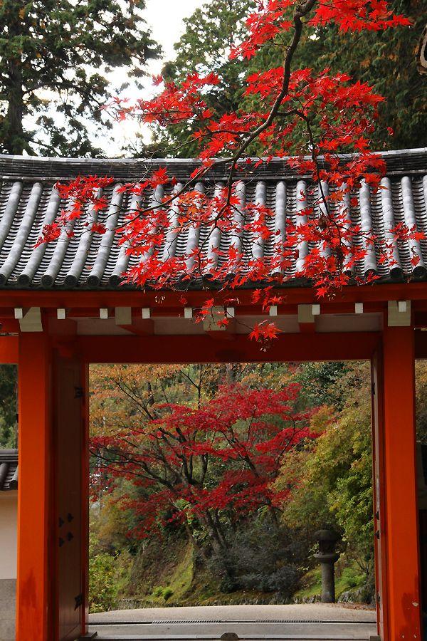 Mimuroto-ji temple, Kyoto, Japan: photo by 92san