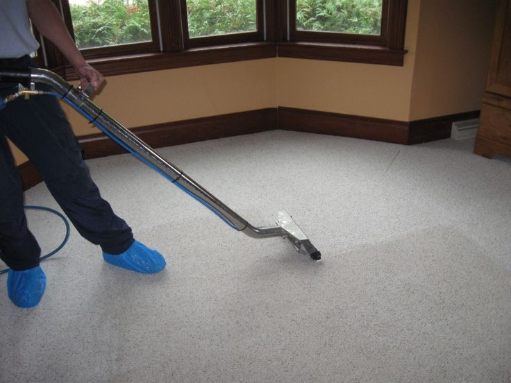 Click this site http://www.melbournecarpetclean.com.au/ for more information on Carpet Cleaning. Carpet Cleaning Melbourne is risk-free for all kinds of carpet as well as recommended for commercial workplaces that need to operate 1 Day, 7 days a week, as company in the workplace need not be interrupted throughout the carpet cleaning process.