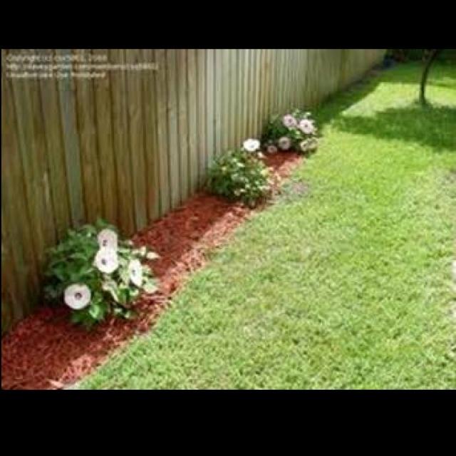 Garden Ideas Houston 78 best home: garden: houston : front/back yard images on