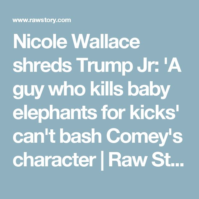 Nicole Wallace shreds Trump Jr: 'A guy who kills baby elephants for kicks' can't bash Comey's character | Raw Story