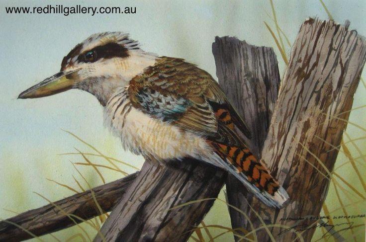 Paul Margocsy 'The Laughs on Me, Aus Laughing Kookaburra' 23x14cm. 61 Musgrave Road, Red Hill Brisbane, QLD, Australia. art@redhillgallery.com.au