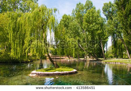 Little isle with willow on the Fonti del Clitunno lake in Umbria.