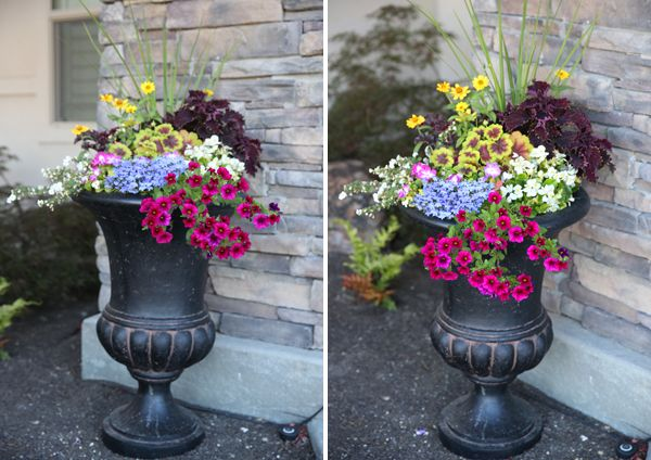 How to: Create a Container Planting – Gardening ~ Porch ~ Backyard ~ Garage/Workshop