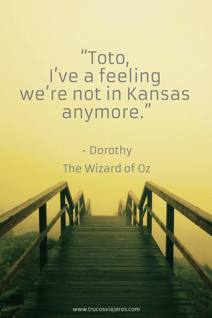 Wizard Of Oz Love Quotes 177 Best Inspirational Quotes Images On Pinterest  Famous Quotes