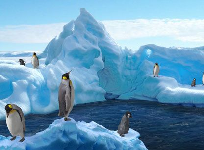free 3d moving screensavers cute 3d animated penguins