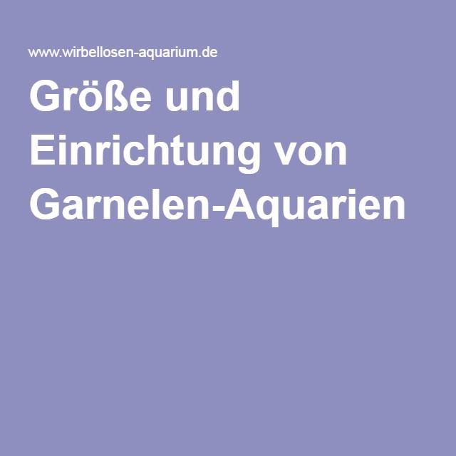 Größe und Einrichtung von Garnelen-Aquarien