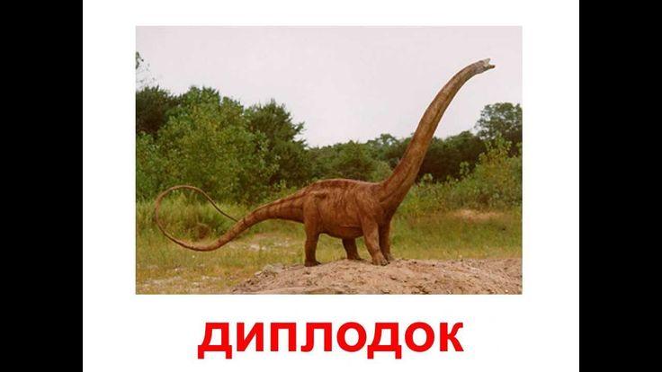 Ролик тематические карточки сделан по методике Гленна Домана. Воспользовавшись озвученными красочными картинками с животными динозаврами, с самого раннего во...