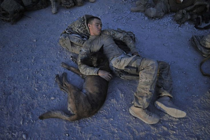 US Army Specialist Justin Coletti of US Forces Afghanistan K-9 combat tracker team resting with Dasty, a Belgian Malinois at an airfield of Forward Operating Base Pasab following a five-hour overnight air assault mission with Bravo Company, 2-87 Infantry Battalion, 3rd Brigade Combat Team in Maiwand district, Kandahar province. Dasty who has a rank of a Sergeant, is a military working dog trained to patrol and locate a target individual and is currently deployed in southern Afghanistan…