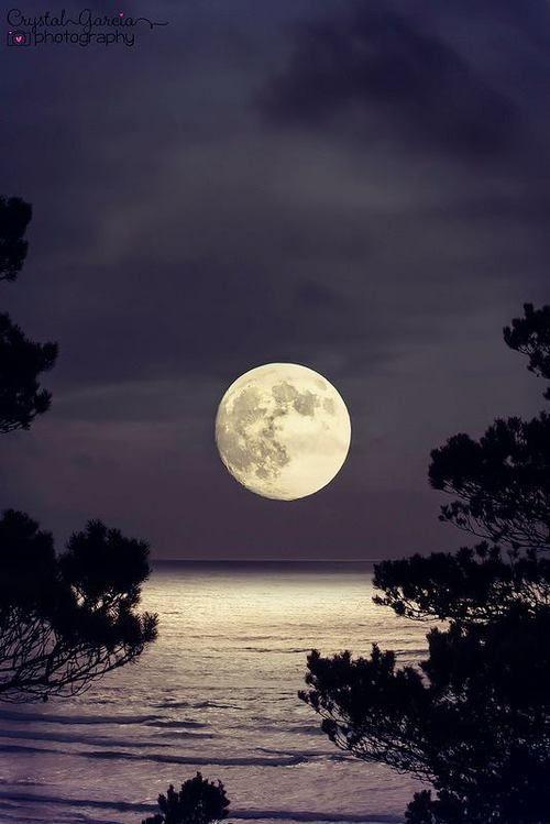 full moon photography 22