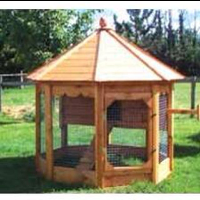 17 best images about hen house ideas on pinterest the for Gazebo chicken coop