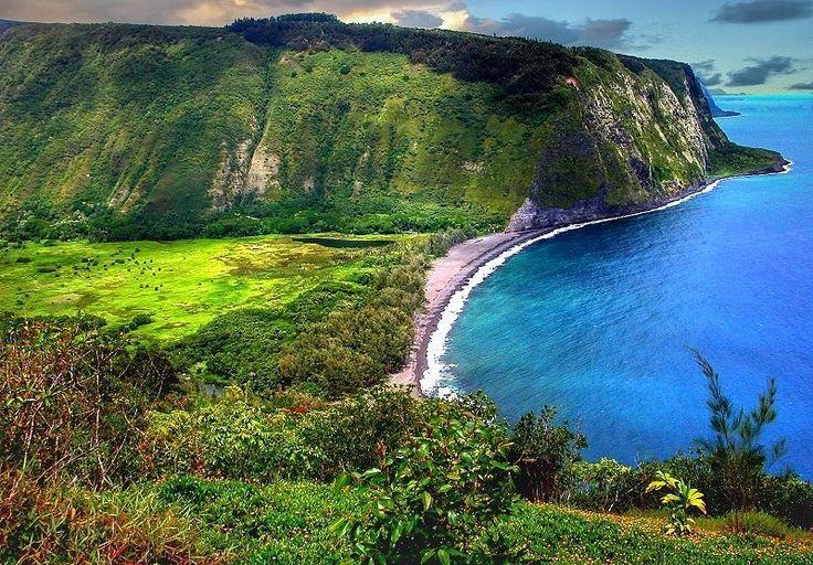 Hawái es uno de los destinos más deseados del mundo. Todo mundo quiere recorrer sus playas de arena negra admirar la actividad de alguno de sus volcánes disfrutar el sonido del ukulele y la manera perfecta en la que se combina con el mar. Aquí 5 curiosidades de Hawái para animarte a hacer un viaje que no olvidarás:  1. Hawái es el archipiélago más largo del mundo abarca más de 1.500 kilómetros y 10 grados de latitud. 2. Hay ocho islas principales y 124 deshabitadas más pequeñas. La Isla…