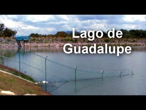 Contaminación en el lago de Guadalupe