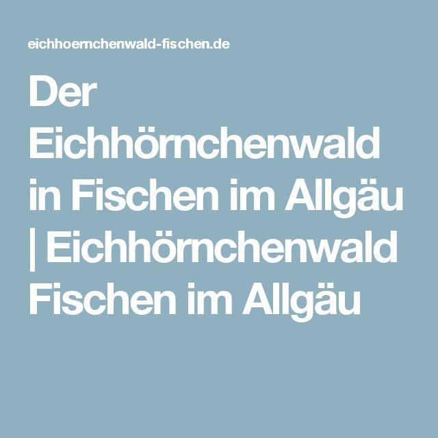 Der Eichhörnchenwald in Fischen im Allgäu | Eichhörnchenwald Fischen im Allgäu