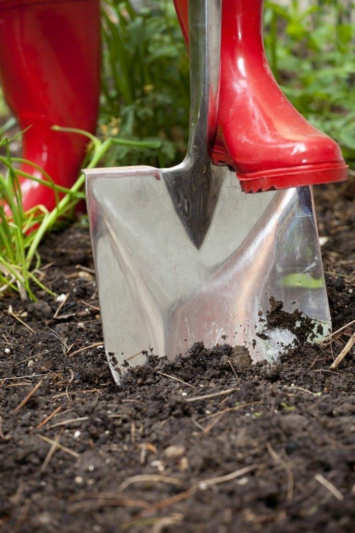 Rasenkante Und Beeteinfassung Zahlreiche Ideen Und Praktische Tipps In 2020 Rasenkanten Beeteinfassung Garten Landschaftsbau