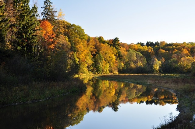 Favourite fall hiking spot - Crooks' Hollow Trail in Flamborough (Greensville), Ontario