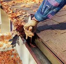 Gutter cleaning.... http://advantagehandy.com/services.asp