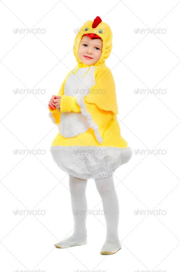 Little boy dressed as a chicken ...  adorable, baby, beautiful, bird, boy, carnival, caucasian, chick, chicken, child, childhood, costume, cute, dressed, fluffy, fun, funny, fur, furry, handsome, happiness, happy, holiday, human, isolated, kid, leisure, little, male, masquerade, one, people, person, play, playful, playing, portrait, preschool, preschooler, pretty, red, small, snout, standing, studio, suit, white, yellow, young