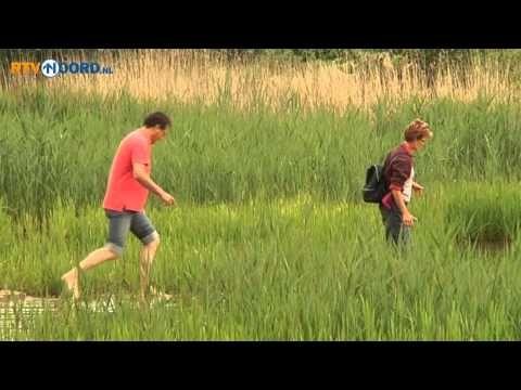 Blote voetenpad - Ecoweetjes