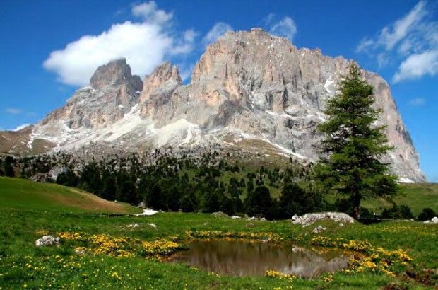 Parco Nazionale delle Dolomiti Bellunesi (Veneto),  di Patrizia Rovere