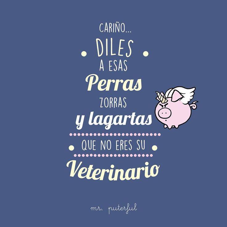 Mr. Puterful (@MrPuterful) cariño... No eres un veterinario