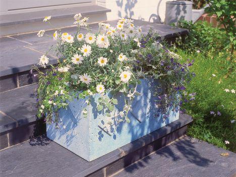 17 Best Ideas About Blumenkübel Beton On Pinterest | Blumenkübel ... Pflanzkubel Aus Beton Gestalterische Highlights