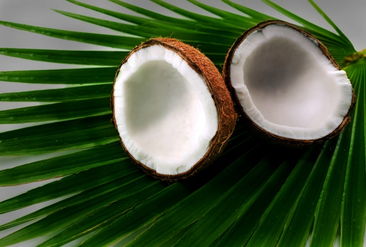 Coconut - benefits of eating coconut, and drinking  it's water. Explains everything you need to know about coconuts and health. http://www.benefitsofeating.com/coconut/