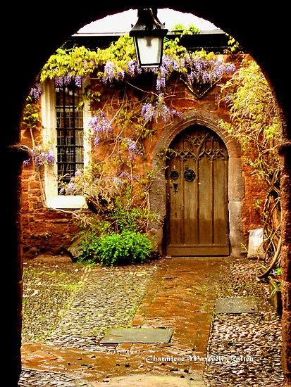 A portal to a door and window draped in wisteria.  Lovely combination in Exeter, Devon, England  photo by Charmiene Maxwell-batten. Can't think where this is?