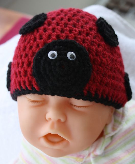 Lady Bug Beanie ~ free pattern: Beanie Baby, Crochet Hats, Crochet Baby, Knits New Born Patterns, Baby Hats, Lady Bugs, Free Patterns, Crochet Patterns, Ladybugs Beanie