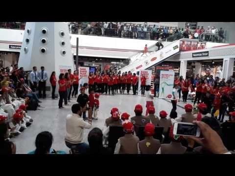Spicejet Holi Celebration 2017 at Terminal 1D - YouTube
