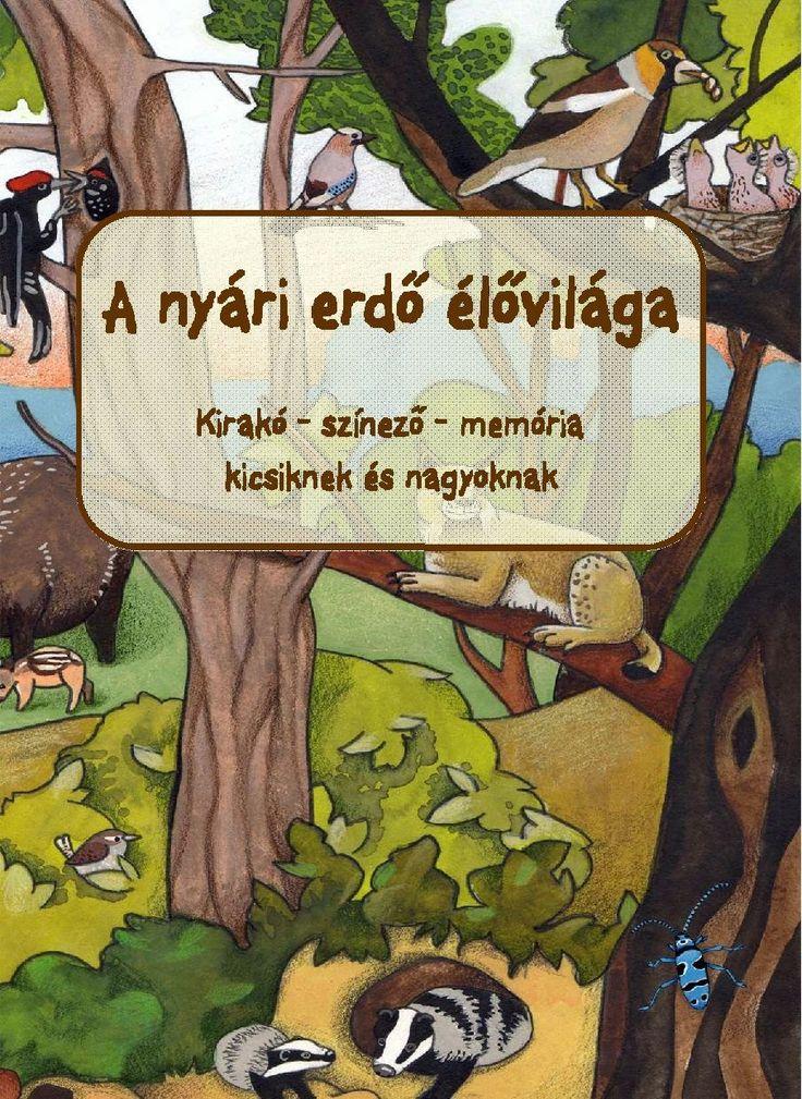 Marci fejlesztő és kreatív oldala: A nyári erdő élővilága
