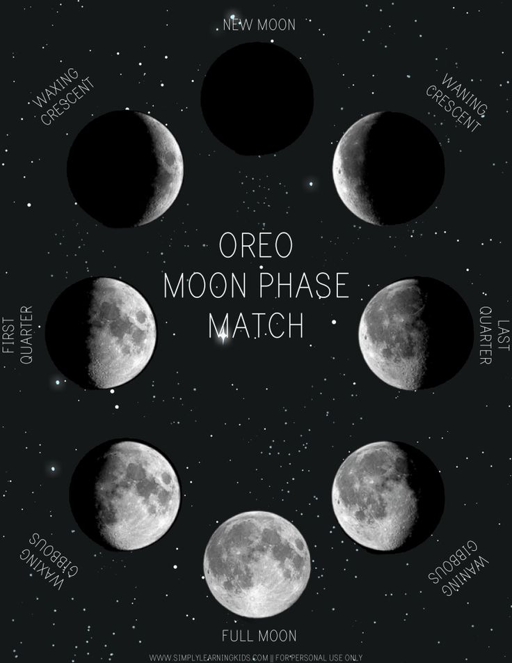 lunar phases in space - photo #4